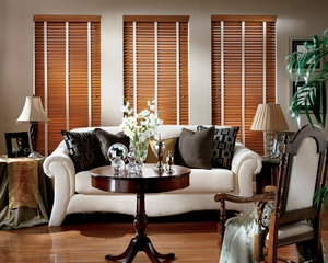 Window treatment with Hunter Douglas wooden blinds