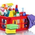Basket organizer with cleaning supplies